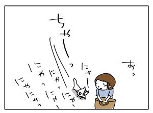 猫と一緒-20100629_08