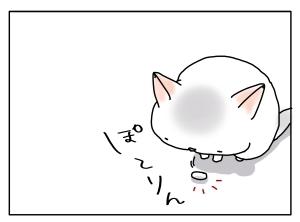 猫と一緒-20111026_03