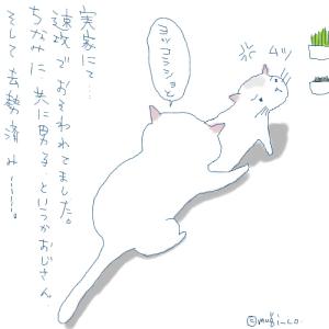 猫と一緒-20070705