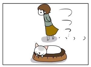 猫と一緒-20110116_04