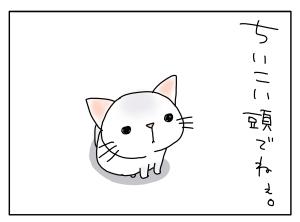 猫と一緒-20100830_04