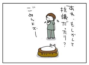 猫と一緒-20100524_05