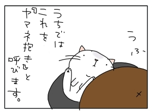 猫と一緒-20101129_05