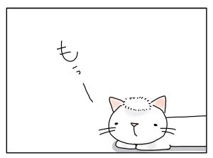 猫と一緒-20100816_10