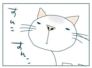 猫と一緒-20090728_03