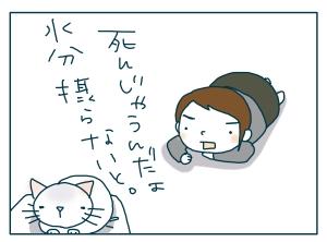 猫と一緒-20090706_05