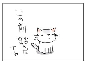 猫と一緒-20100428_07
