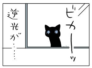 猫と一緒-20110322_11
