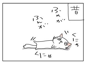 猫と一緒-20100628_05