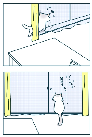 猫と一緒-20090119-06