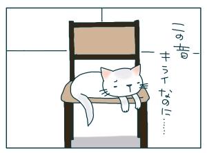 猫と一緒-20091214_11