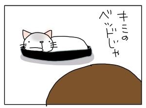 猫と一緒-20121002_09
