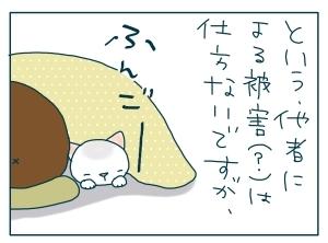 猫と一緒-20091212_07