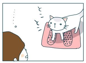 猫と一緒-20090724_06