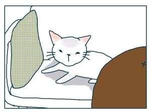 猫と一緒-20090129-04