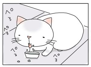 猫と一緒-20100217_19
