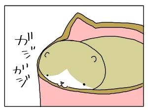 20160323_05