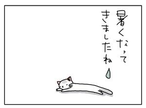 猫と一緒-20130618_03