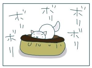猫と一緒-20091114_09