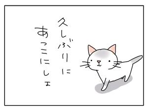 猫と一緒-20110126_03