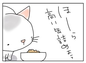 猫と一緒-20110420_01