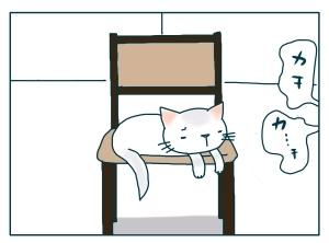 猫と一緒-20091214_15