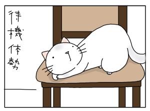 猫と一緒-20100212_08