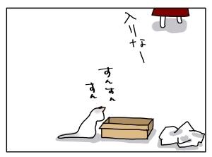 猫と一緒-20120711_03