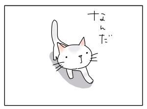 猫と一緒-20100421_11