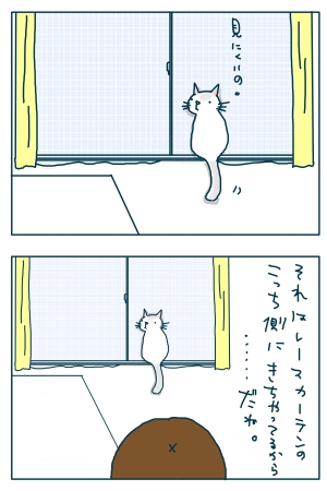 猫と一緒-20090119-08