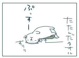 猫と一緒-20091212_12