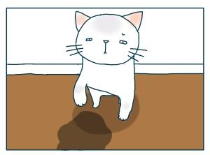 猫と一緒-20090716_11