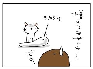 猫と一緒-20110404_10