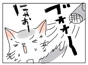 猫と一緒-20110614_02