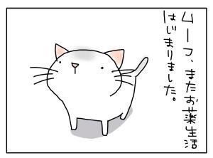 20150224_04
