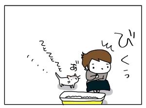 猫と一緒-20131008_07