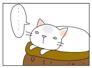 猫と一緒-20100524_04
