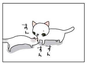 猫と一緒-20110908_09