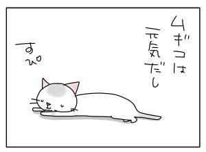猫と一緒-20101229_07