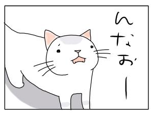 猫と一緒-20100222_15