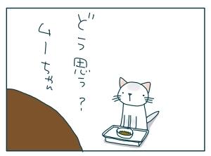 猫と一緒-20091119_12