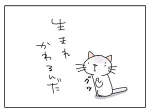 猫と一緒-20100921_02
