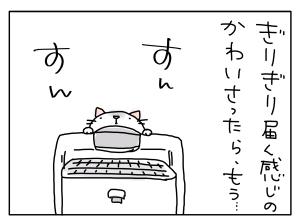 猫と一緒-20110509_05