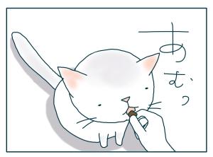 猫と一緒-20090821_18