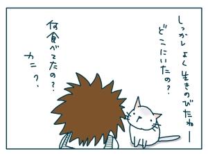 猫と一緒-20090130-14