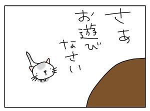 猫と一緒-20110516_03