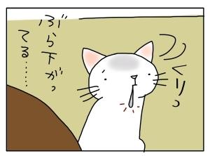 猫と一緒-20130227_03