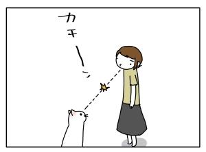 猫と一緒-20100818_03