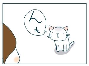 猫と一緒-20091221_03