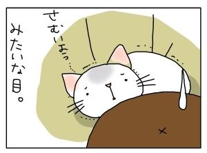猫と一緒-20130110_05
